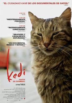 Película: Kedi (Gatos de Estambul)
